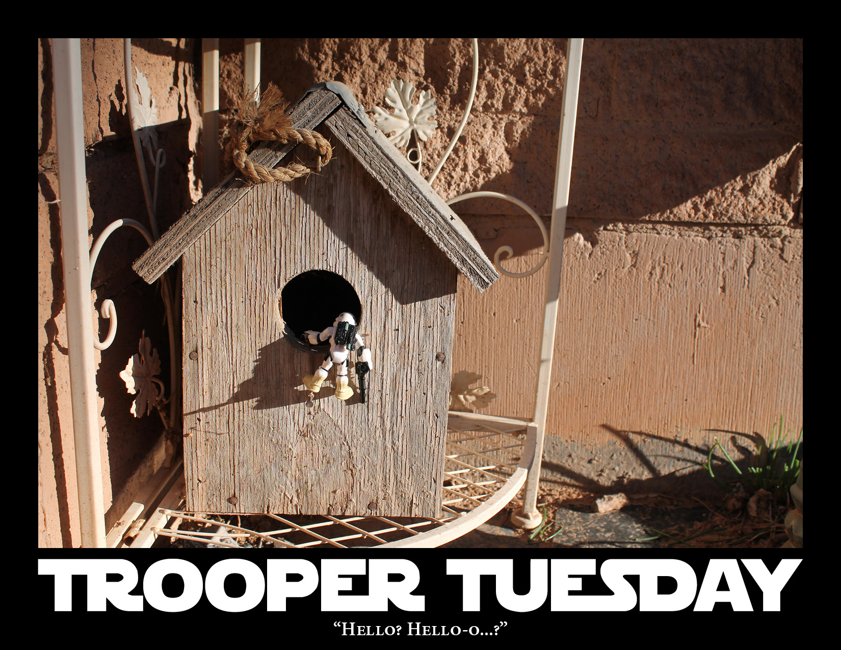 A Sandtrooper looks into a birdhouse.