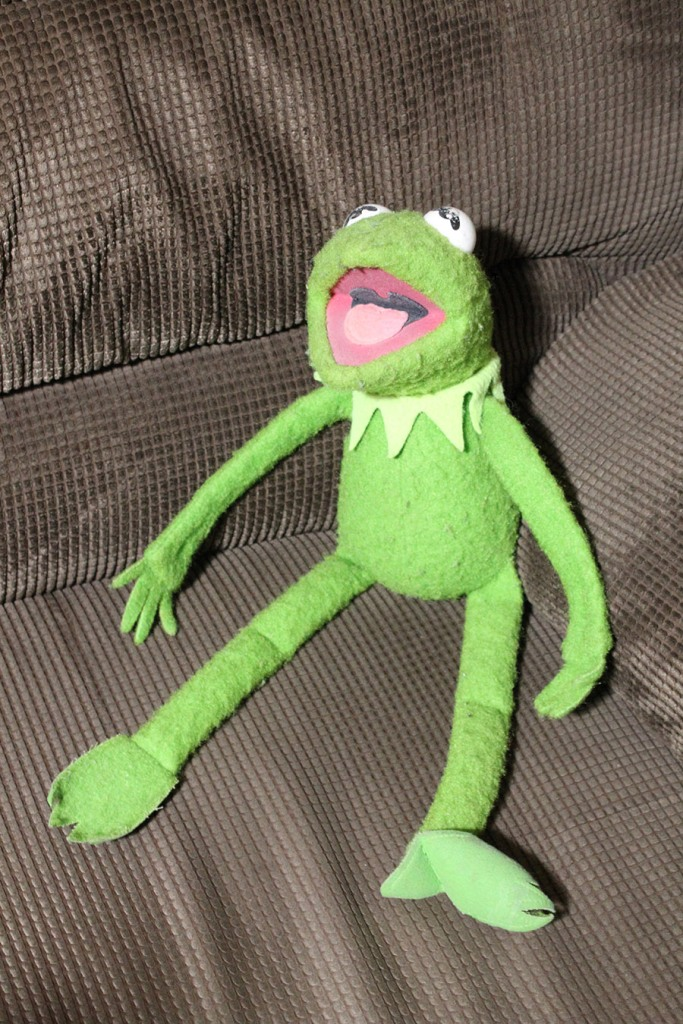This image has an empty alt attribute; its file name is ah_kermit.jpg